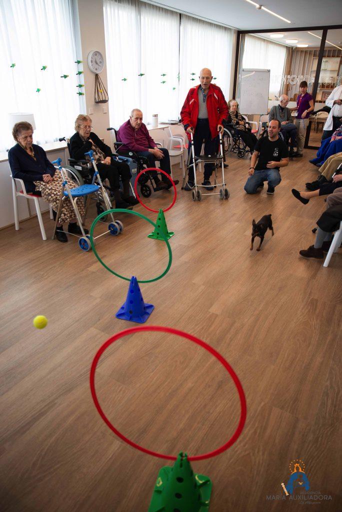 Terapia Canina María Auxiliadora